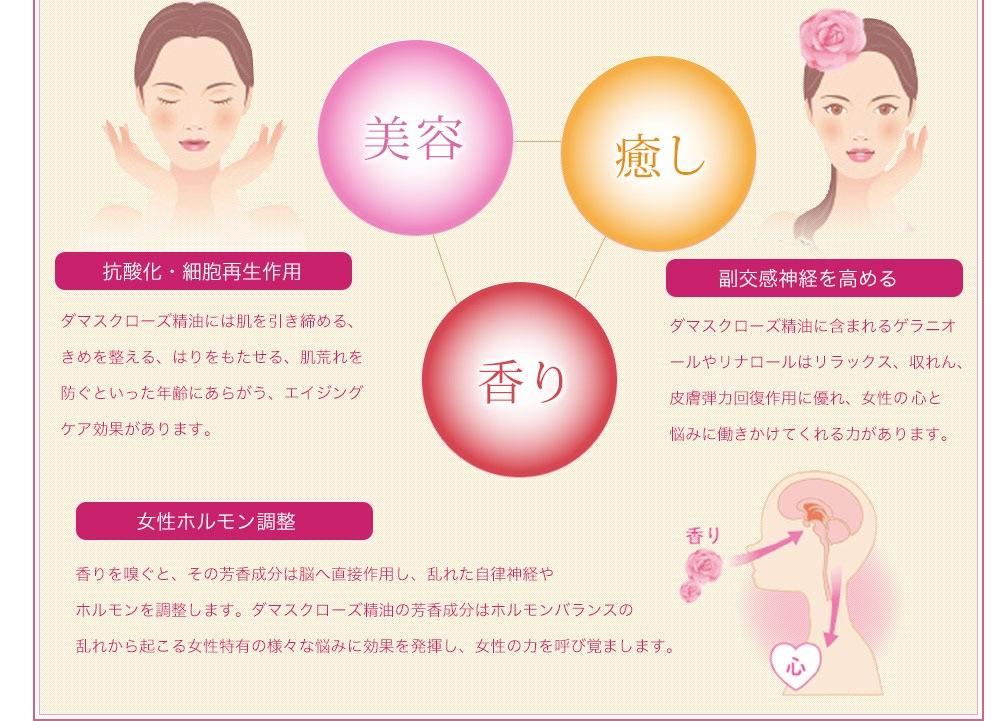 美容 抗酸化・細胞再生作用 ダマスクローズ精油には肌を引き締める、きめを整える、はりをもたせる、肌荒れを防ぐといった年齢にあらがう、エイジングケア効果があります。癒し 副交感神経を高める ダマスクローズ精油に含まれるゲラニオールやリナロールはリラックス、収れん、皮膚弾力回復作用に優れ、女性のこ心と悩みに働きかけてくれる力があります。 香り 女性ホルモン調整 香りを嗅ぐと、その芳香成分は脳へ直接作用し、乱れた自律神経やホルモンを調整します。ダマスクローズ精油の芳香成分はホルモンバランスの乱れから起こる女性特有の様々な悩みに効果を発揮し、女性の力を呼び覚まします。