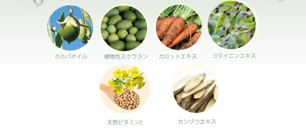 ホホバオイル 植物性スクワラン カロットエキス ヨクイニンエキス 天然ビタミンE カンゾウエキス