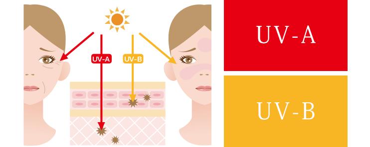 紫外線ダメージの原因,UV-A,UV-B