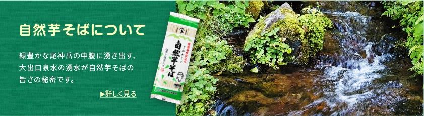 自然芋そばについて 緑豊かな尾神岳の中腹に湧き出す、大出口泉水の湧水が自然薯そばの旨さの秘密です。