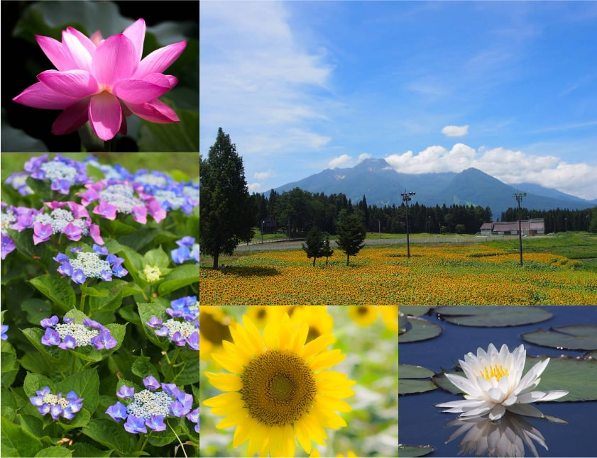 [写真]浦川原の風景