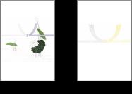[のし]蓮のし/黄のし