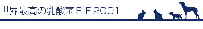 EF-2001配合 動物用乳酸菌食品 JIN