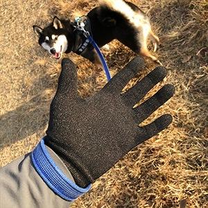 銅繊維手袋でお散歩画像