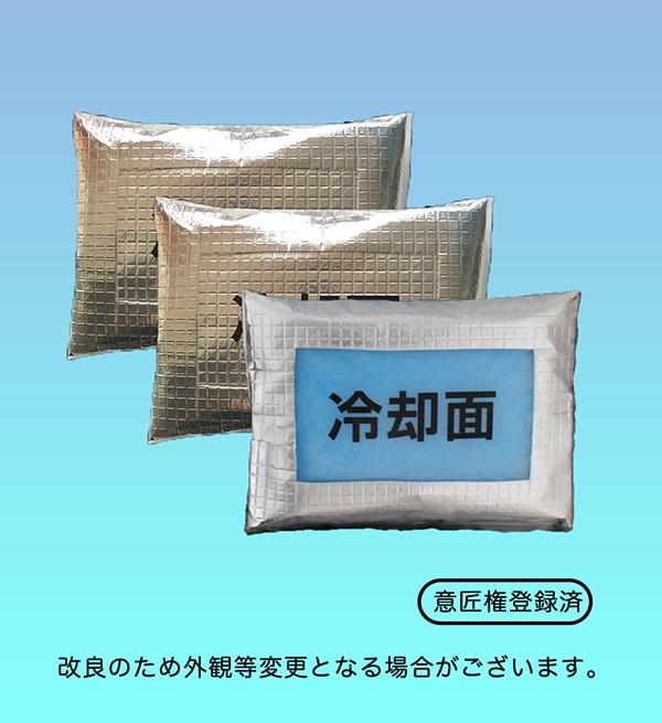 ホレイベストFHV専用交換用保冷剤画像