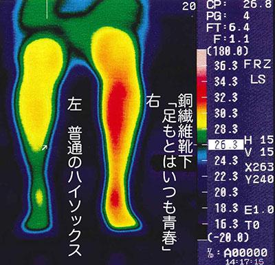 ハイソックス実験のサーモグラフィー写真