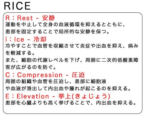 RICEの説明画像