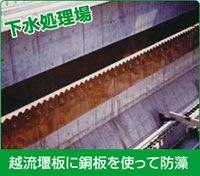 下水処理場、越流堰板に銅板を使って防藻画像