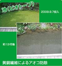 池(ビオトープ)、黄銅繊維によるアオコ防除画像