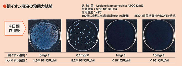 銅イオン溶液の殺菌力試験画像