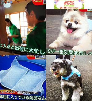 よじごじDays放送、犬用画像