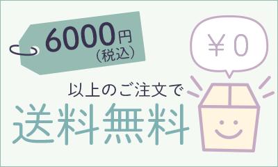 6000円以上のご注文で送料無料