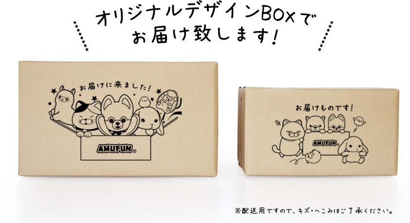 スペシャルデザインBOXでお届けいたします!