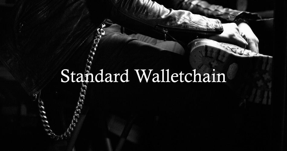 Argent Gleam Standard Walletchain