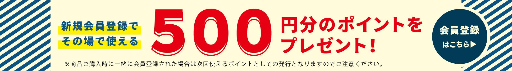 新規会員登録で500円分ポイントプレゼント