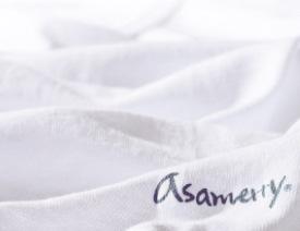 アサメリー