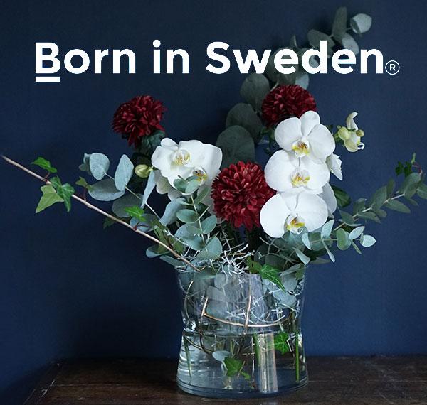 Born in S