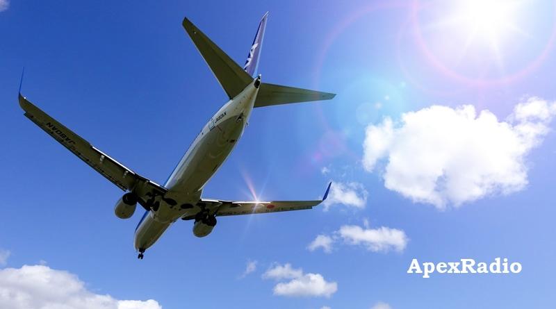 初夏 飛行機