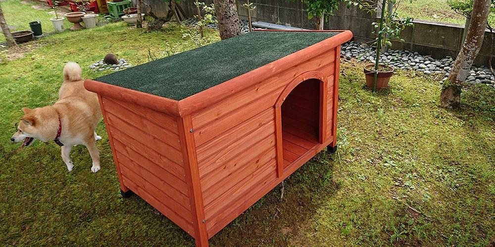 【お庭】片屋根木製犬舎の設置イメージ2