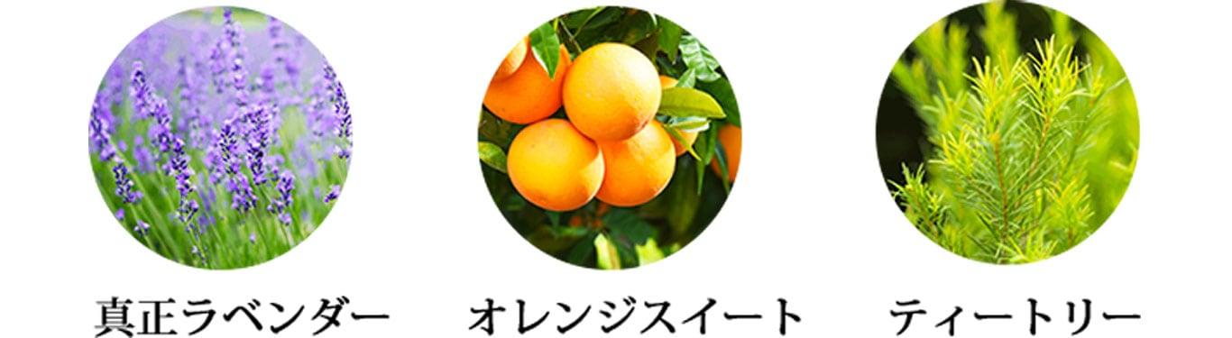 真正ラベンダー・オレンジスイート・ティートリー