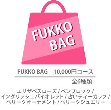 FUKKO BAG 10,000円コース 全6種類