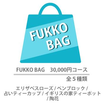FUKKO BAG 30,000円コース 全5種類
