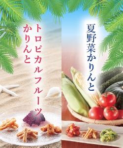 夏野菜かりんと