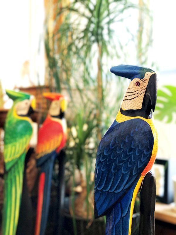 木彫りオウム/南国鳥