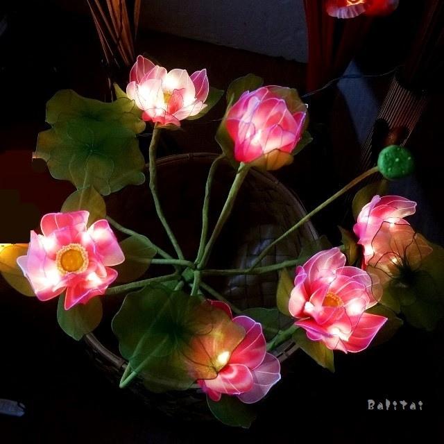 ロータスライト/睡蓮ランプ