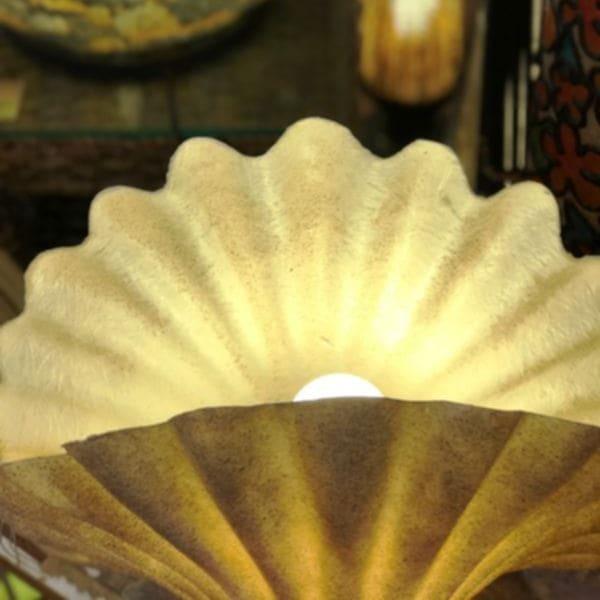 貝 ランプ/シャコ貝