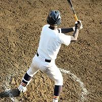 ダイトの竹バット、1番人気は900グラム