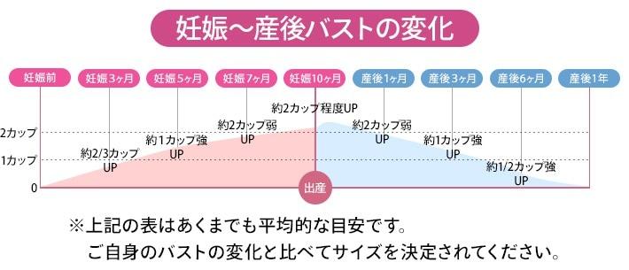 妊娠〜産後・バストの変化グラフ