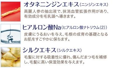 ラッシュセラムEX 説明01