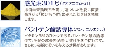 ラッシュセラムEX 説明02