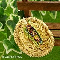 Corn(トウモロコシ)ブローチ ミックス