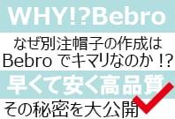 WHY!?Bebro