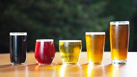 ビールの縁側は月額制ではありません