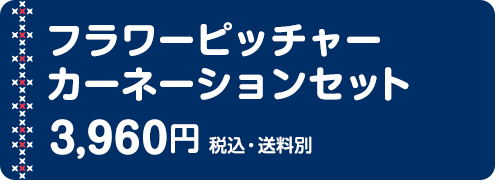 フラワーピッチャー カーネーションセット 3,960円(税込・送料別)