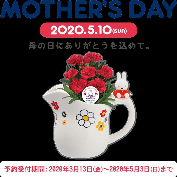 ミッフィーのお花屋さん Flower Miffyの母の日ギフト