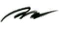 ニュースキン ニュー カラー クチュール アイライナー ブラック