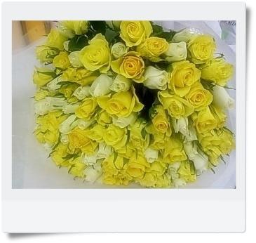白と黄色のミックス100本