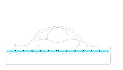 空気の層を作るパッドで風を通す