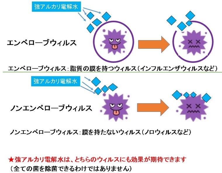 強アルカリイオン電解水はウィルス対策に有効