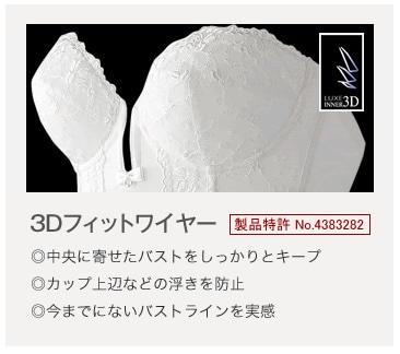 特許取得3Dフィットワイヤー