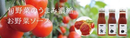 ミモレ農園生野菜から作った手作りお野菜ソース