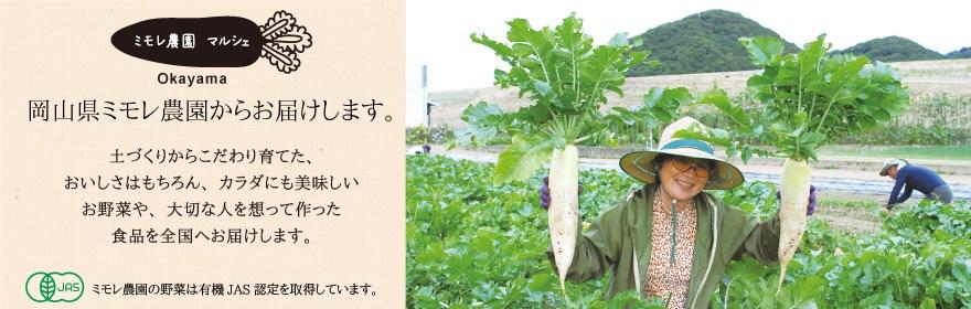 ミモレ農園マルシェ(BMD農法で育った新鮮おいしいお野菜をお届)