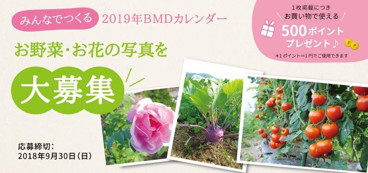 みんなで作るBMDカレンダー2019