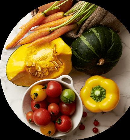 材料野菜イメージ