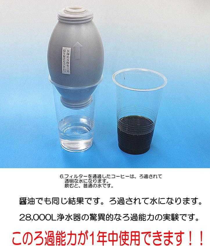 驚異的な浄水の力の実験3