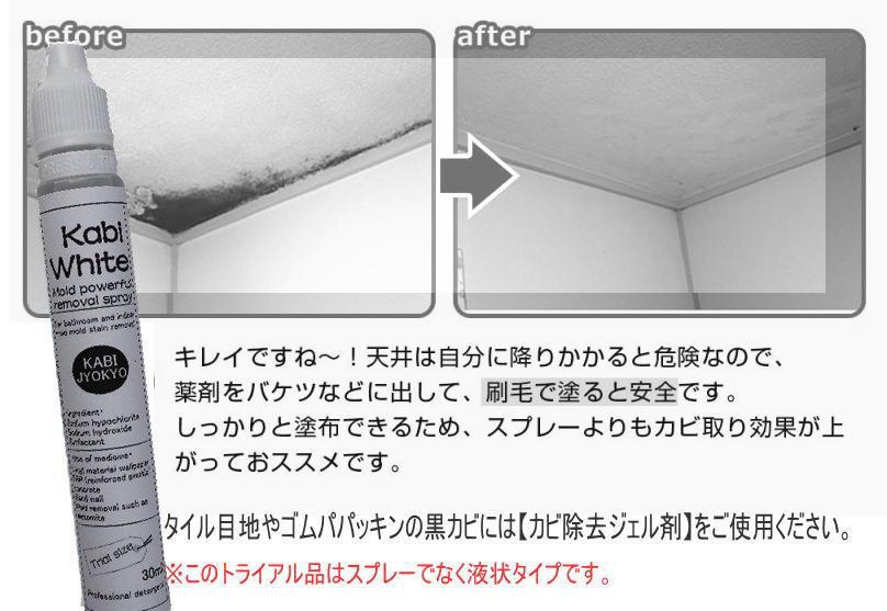 カビ除去,カビ取り,カビ対策,カビ壁紙